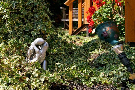 החצר והחוץ
